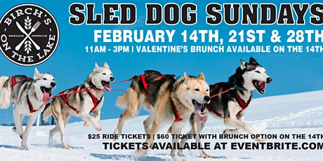 Sled Dog Sundays at Birch's on the Lake tickets