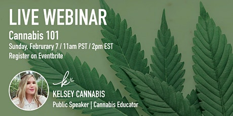 Cannabis 101 Live Webinar tickets