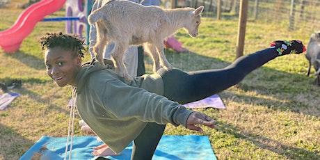 Carolina Goat Yoga: March 13th 11-12pm tickets