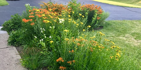Native Plant Garden Q&A tickets