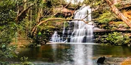 Kariong Brook Falls Hike tickets