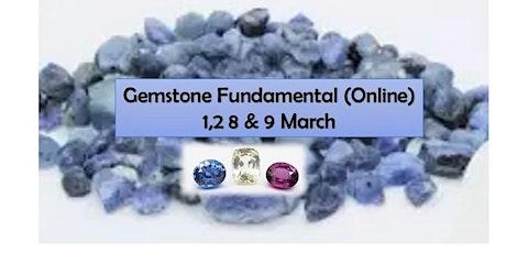 Gemstone  Fundamental (Online)(1,2,8,9 March 2021) tickets