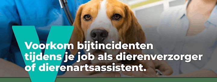 Afbeelding van Voorkom bijtincidenten tijdens je job als dierenverzorger.