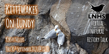 Kittiwakes on Lundy by Kirsty Neller tickets