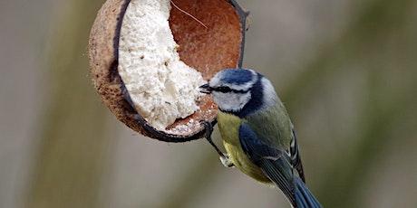 WILD WEDNESDAY Bird Feeder workshop tickets