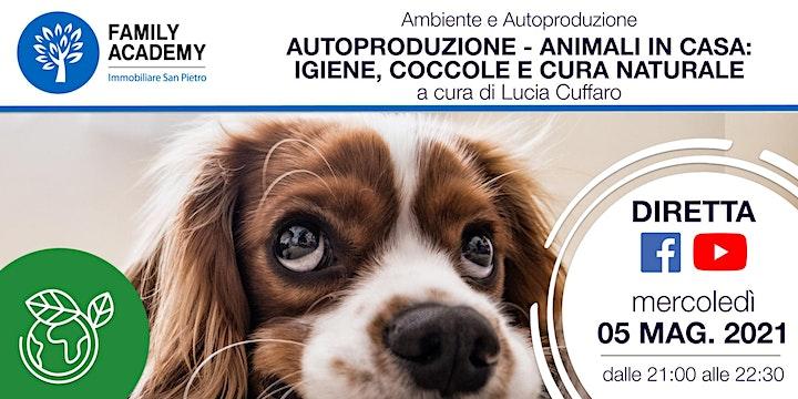 Immagine AUTOPRODUZIONE - ANIMALI IN CASA: IGIENE, COCCOLE E CURA NATURALE