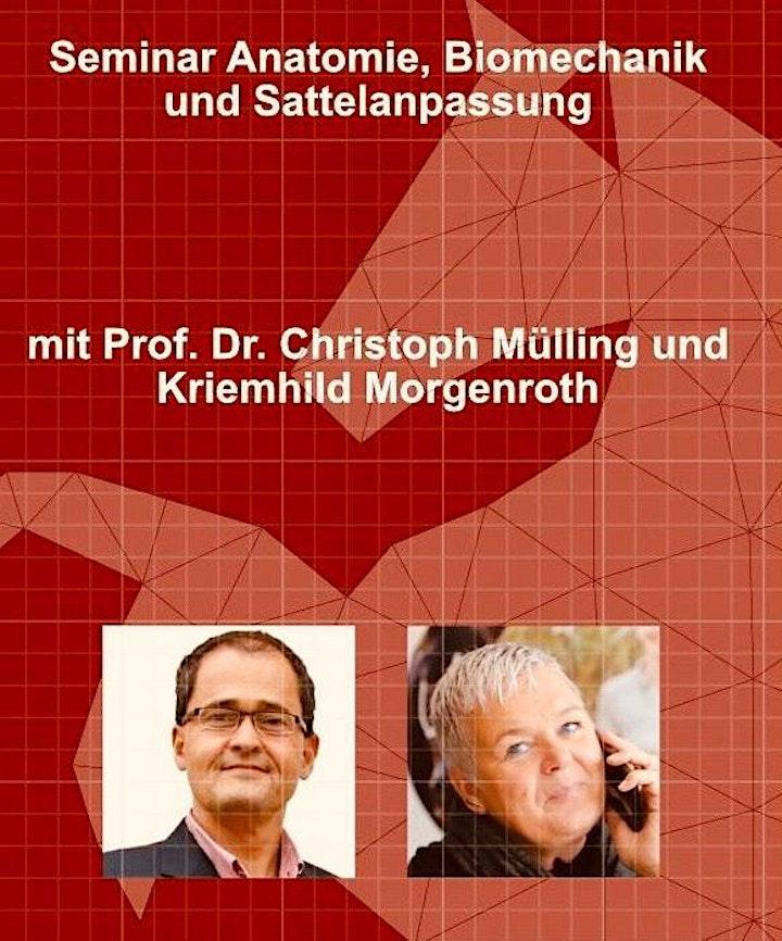 Teil 1: Sattelseminar mit Prof. Christoph Mülling und Kriemhild Morgenroth: Bild