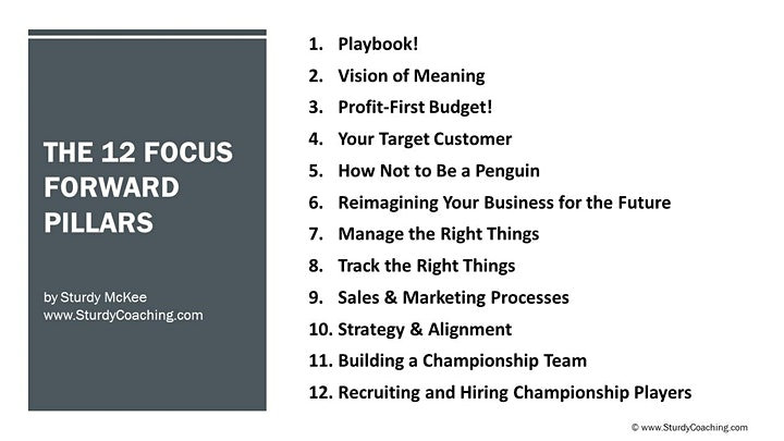 The 12 Focus Forward Pillars for your Business - March 16 image