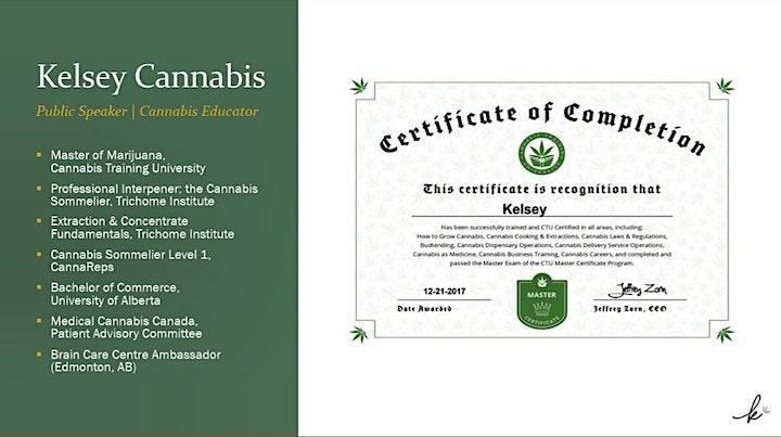 Cannabis 101 Live Webinar image