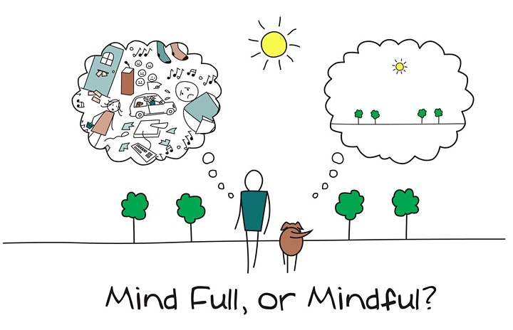 MINDFULNESS MEDITATION ONLINE (ANY DONATION OR FREE IF YOU CAN T AFFORD IT) image