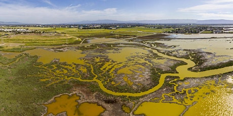 Wetland Restoration in the South Bay tickets