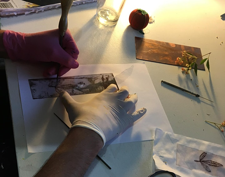 Friday Etching workshop at Norman Lindsay Gallery image