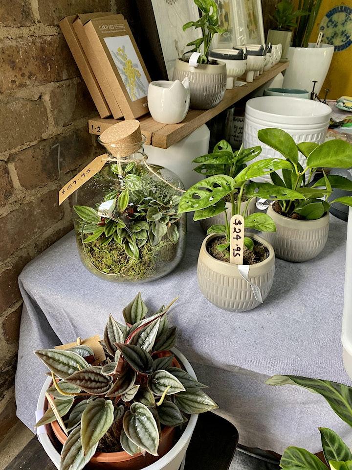 Plant, Pots & Pet Goods • New Year Pop Up Shop • 4 Days Only! image
