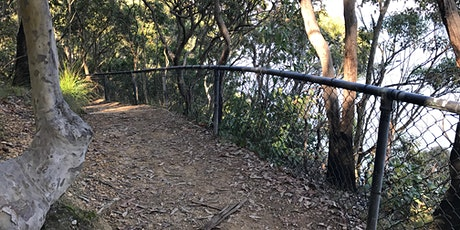 Green Point Scenic Hike tickets
