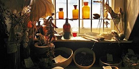 BSHP Meeting - Unlocking the Medieval Medicine Cabinet tickets