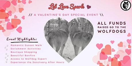 Let Love Spark: A Special Valentine's Day Event tickets