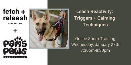 Leash Reactivity - Triggers and Calming Techniques tickets