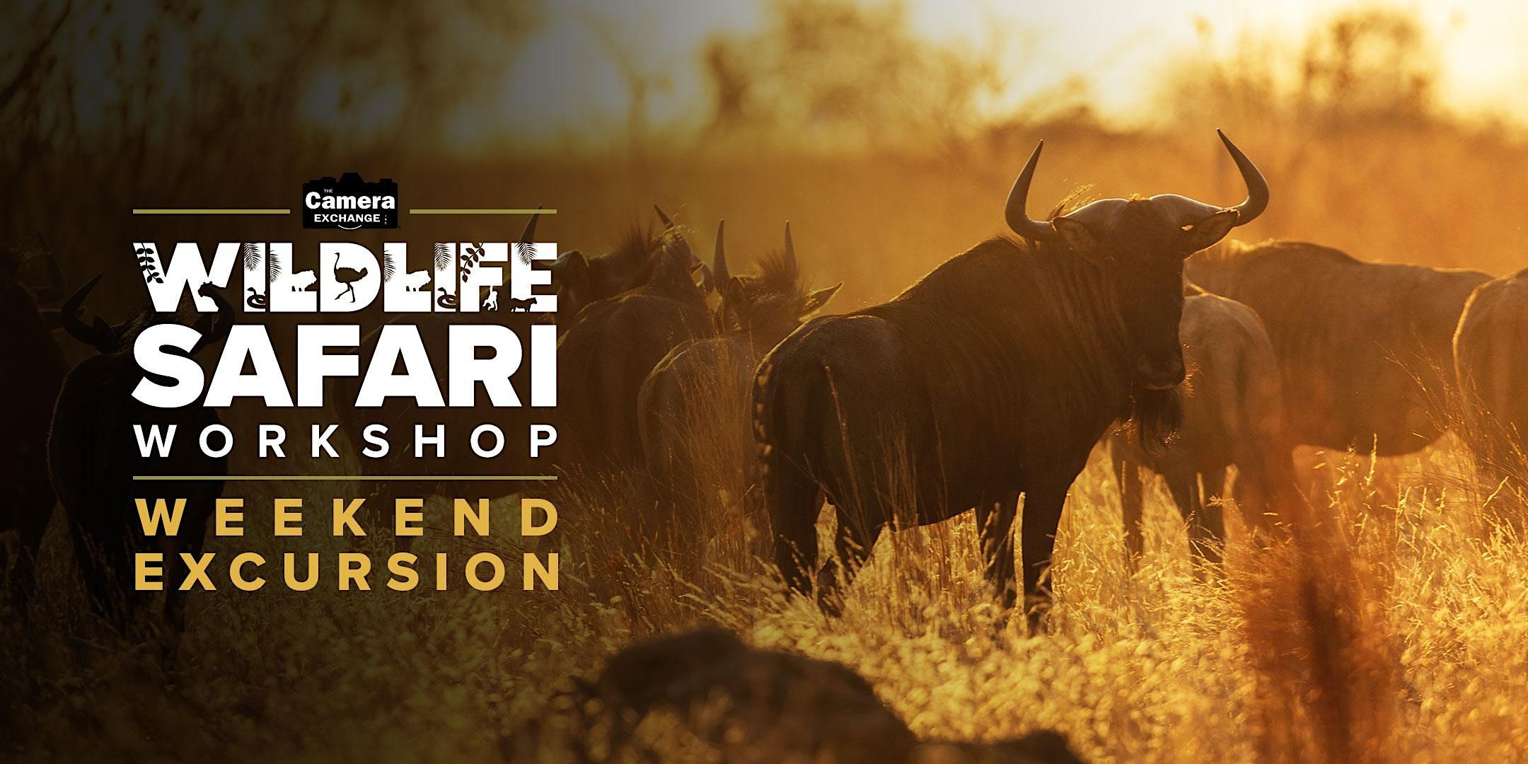 Weekend Safari Excursion