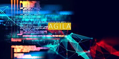 iSAQB® Advanced Level - Agile Softwarearchitektur (AGILA) Tickets