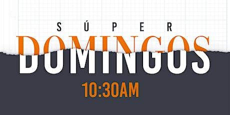 Súper Domingo - Registro Online   24 de enero de 2021 boletos