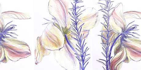 STARTING February 28th |Botanical Drawing Challenge! tickets