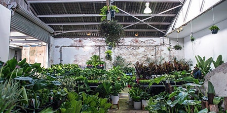 Sydney - Huge Indoor Plant Warehouse Sale - Rumble in the Jungle tickets