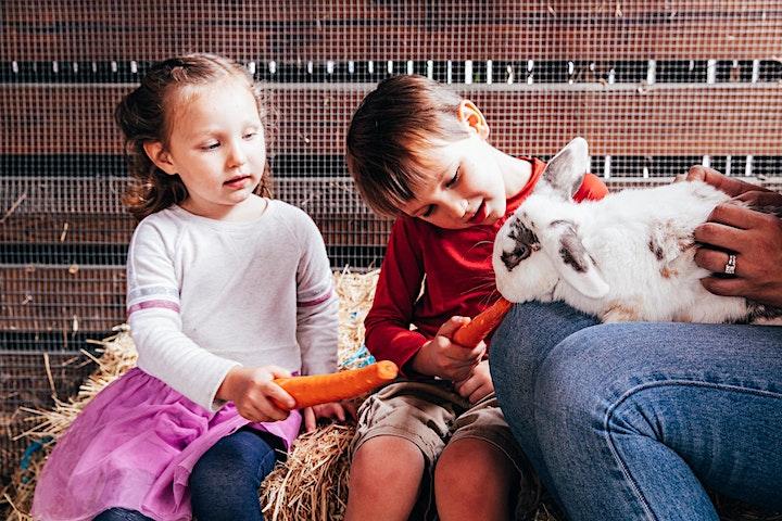 Los Gatos Parent Nursery School Virtual Open House image