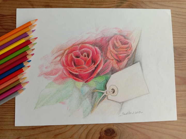 Colour Pencil Drawing-Sketching Course starts Sept 7  (8 sessions) - Newton image