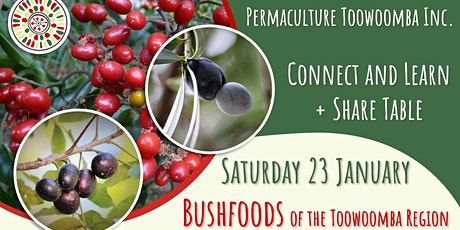 Bushfoods of the Toowoomba Region - January Connect and Learn tickets