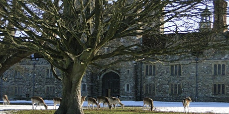 Timed car parking at Knole (25 Jan - 31 Jan) tickets