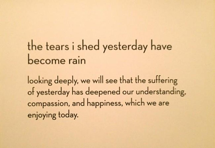 """The tears I shed yesterday have become the rain."" image"