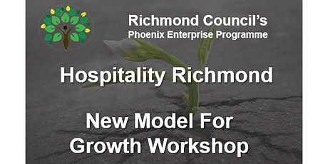 Business Viability and New Model for Growth  tickets