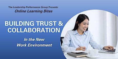 Building Trust & Collaboration (Online - Run 12) tickets