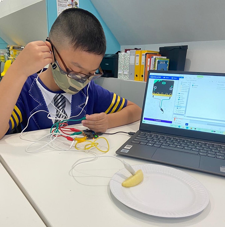 Micro:bit Coding & Science Camp image