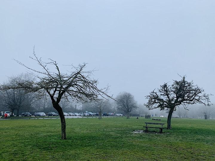 Richmond Park Soulwalk image