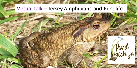Jersey Amphibians and Pondlife tickets