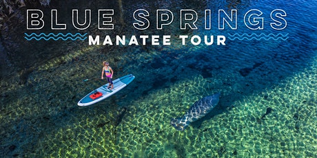 Blue Springs Manatee Tour tickets