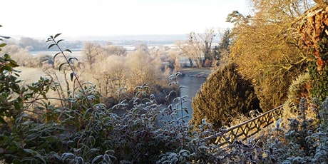 Timed entry to the Weir Garden (29 Jan - 31 Jan) tickets