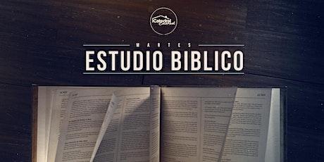 Estudio Bíblico entradas