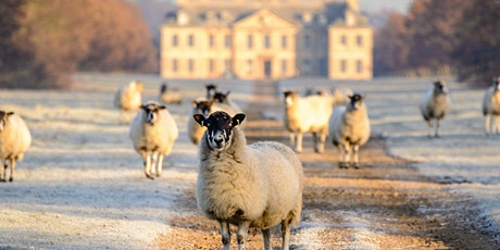 Timed entry to Belton Garden and Parkland (25 Jan - 31 Jan) tickets