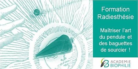 Formation Radiesthésie : Pendule et Baguettes de sourcier billets