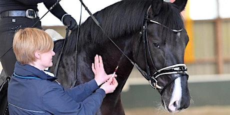 EMS und Cushing - nur ein Problem des dicken, alten Ponys? Tickets
