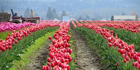 PAWA Paints Skagit Tulips 2021 tickets