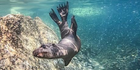 Flourishing Oceans - Wildlife Weeks tickets