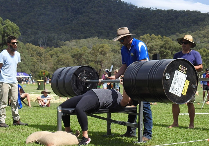 Mighty Mitta Muster image