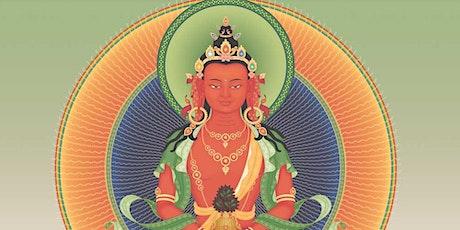 Lunga vita e saggezza - Ritiro su Buddha Amitayus biglietti
