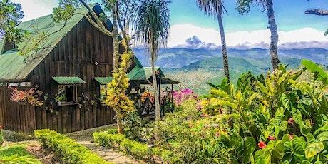 Voyage de rêve Colombie : région Bogota & Cali - découverte, SALSA, surf... billets