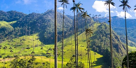 Voyage de rêve Colombie - Bogota, Medellin & Vallée Cocora tickets