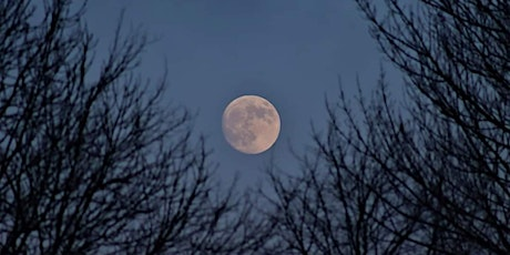 Full Moon Release and Forgiveness Meditation Ceremony Tickets