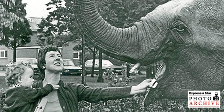 Eating the elephant: Express & Star photograph archive one bite at a time tickets